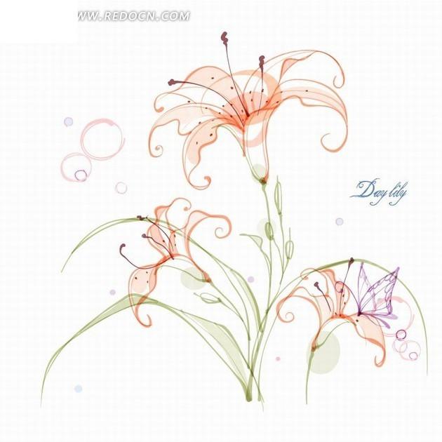 花卉插画手绘粉红色百合花day