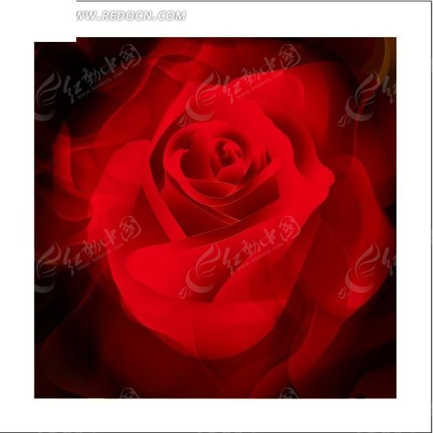 免费素材 矢量素材 花纹边框 印花图案 花卉插画深红色的玫瑰花特写