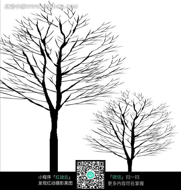 一大一小两棵黑白树木图片