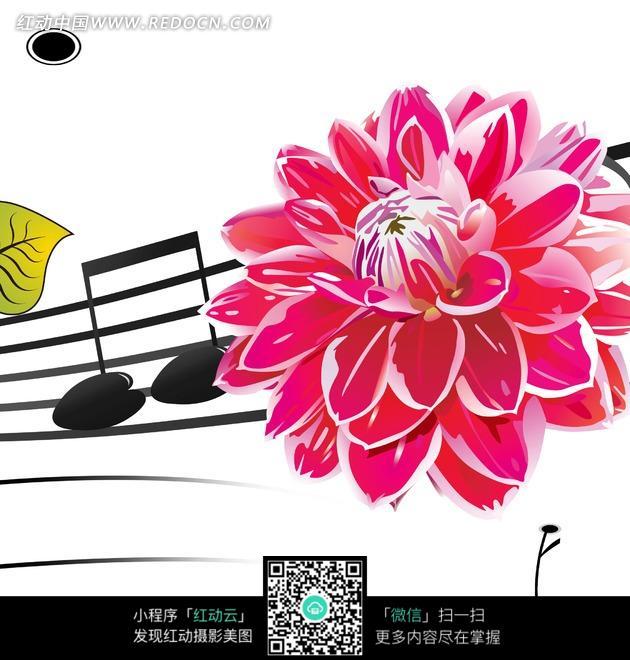五线谱音乐符号上的粉红莲花图片