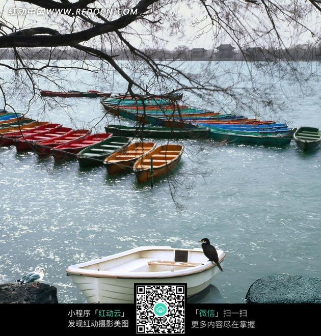 河边有船的风景图片