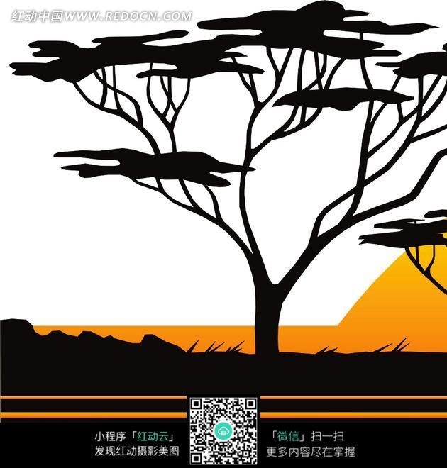 一棵树的囹�a_黄昏下的一棵树剪影
