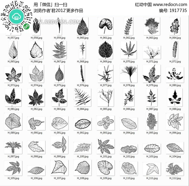 单色叶子自定义形状文件csh格式图片