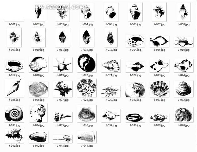 单色海螺自定义形状文件csh格式