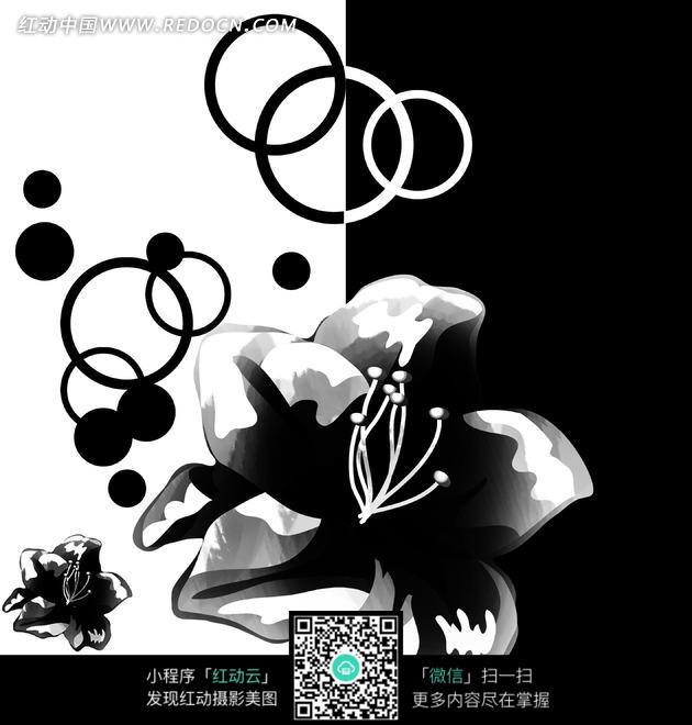 萱草与圆圈黑白画图片