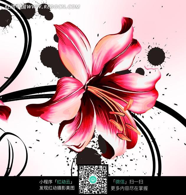 黑底手绘花朵图片
