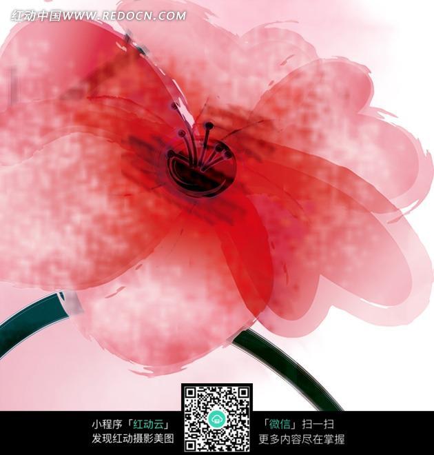 水彩风格红花手绘稿图片