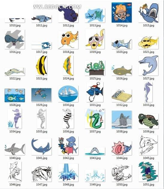 海底动物合辑-海马海螺等