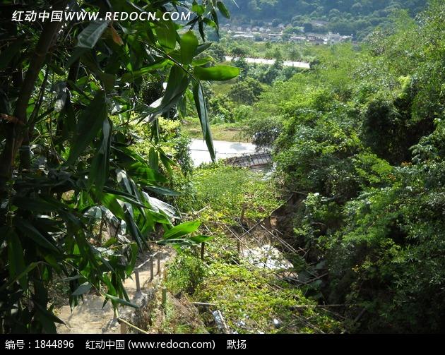 山间绿景图片_自然风景图片