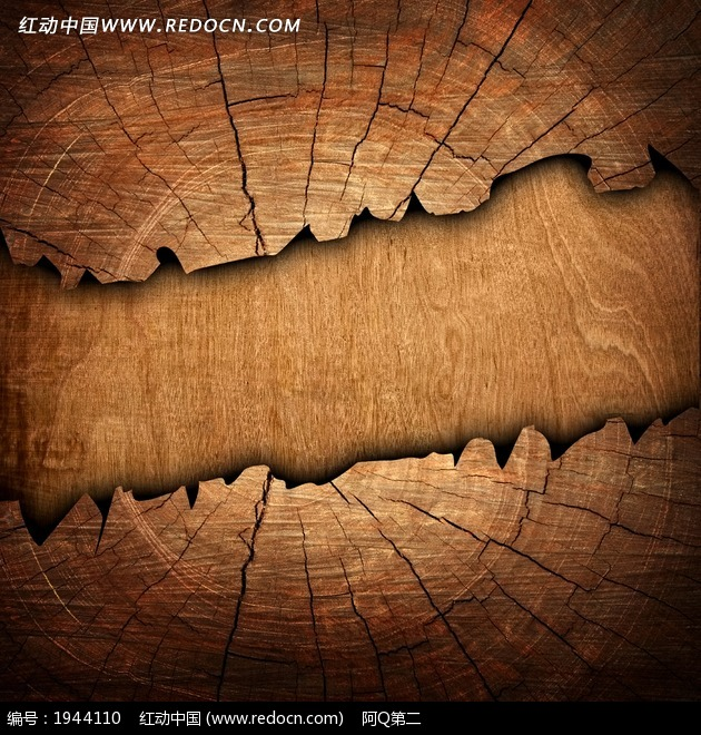 年轮蛋糕 大树的年轮 树的年轮简笔画; 年轮简笔画; 带年轮的树桩简笔