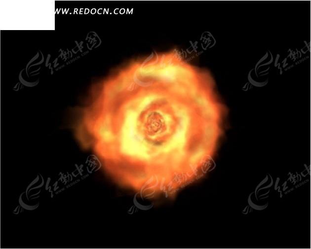 燃烧的火焰玫瑰图片