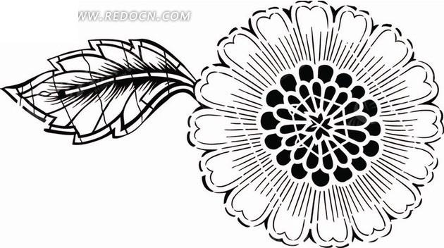 花朵叶线描画
