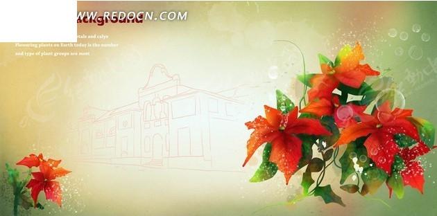 建筑线稿背景上的手绘一品红