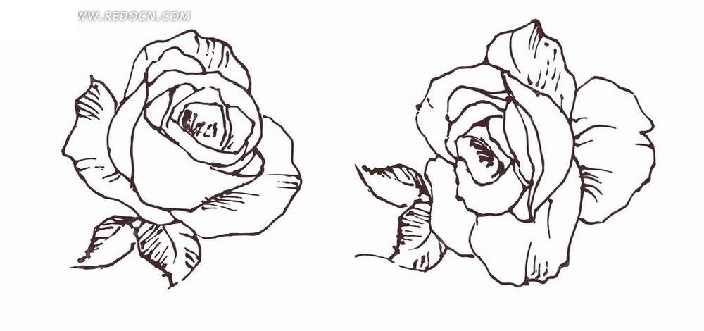 花朵和叶子线描画psd素材图片