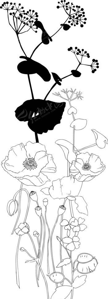 盛开的花朵和花苞以及叶子线描画