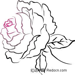 黑色叶子和玫瑰花线描画图片