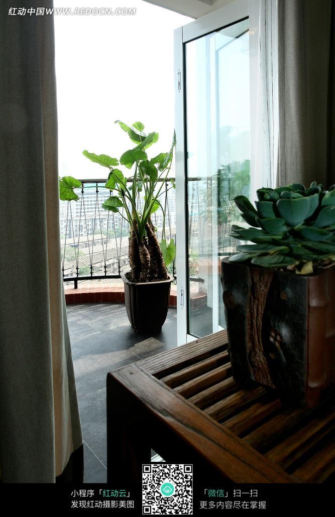 木质家具 阳台 盆栽 绿色植物 花卉 室内设计 家装设计 装饰效果图