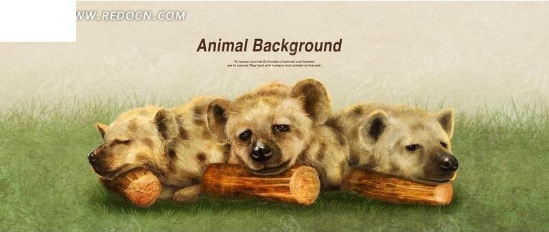 草地上趴在木头上睡觉的土狼psd分层素材