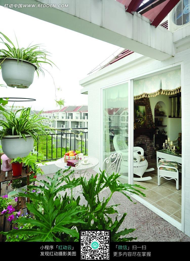 绿色植物 盆栽植物 阳台 装饰设计 室内设计 装饰效果图 摄影图片