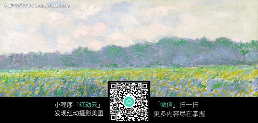 绘画作品-树林外开着黄色花朵的草地图片