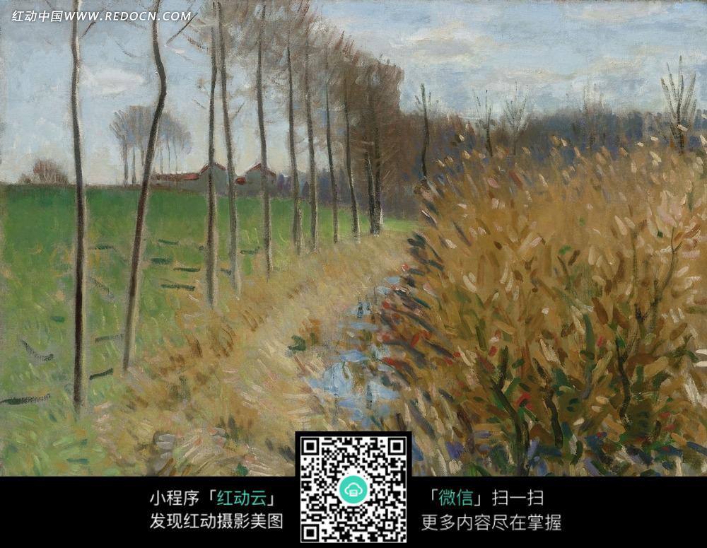 绘画作品-湖边的灌木丛和草地上的一排树木图片