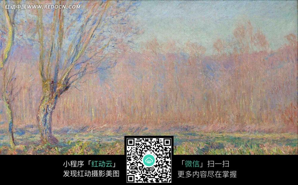 绘画作品-彩色的树林和草地上的花朵