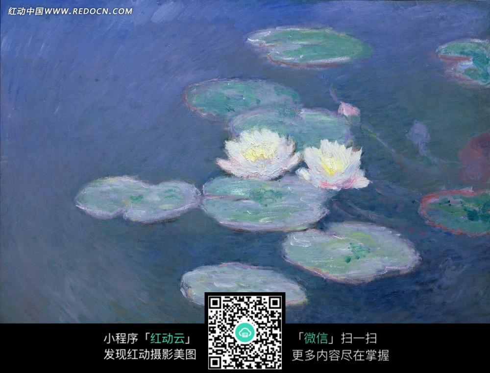 绘画作品-池塘上的白色荷花和荷叶图片
