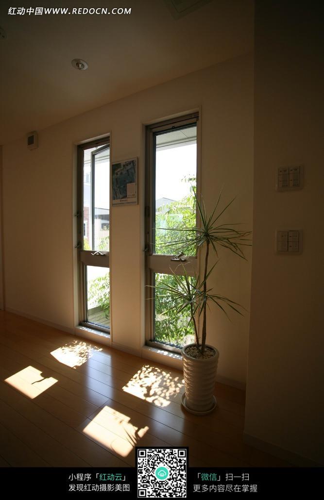 室内一角的盆景和窗户