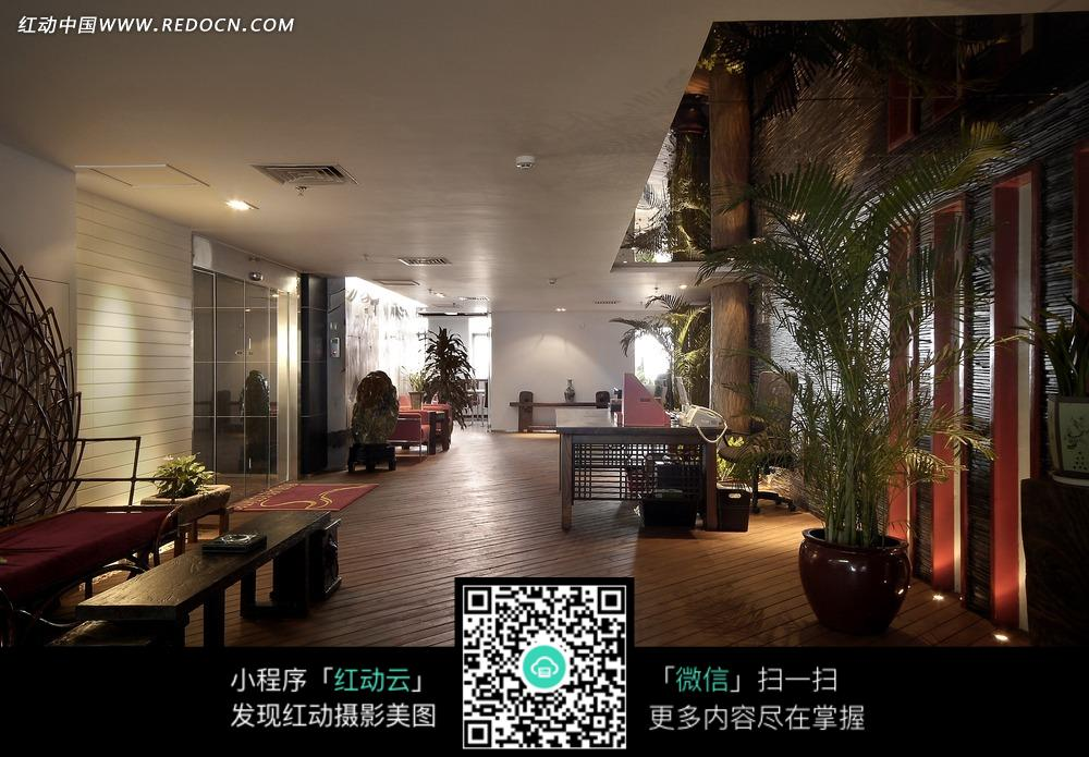 木地板大厅内的绿色植物图片