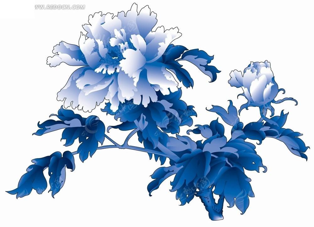 花卉工笔画—蓝色叶子和绽放的牡丹花psd素材