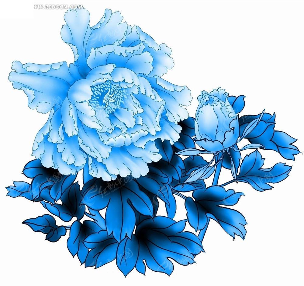 花卉工笔画—天蓝色牡丹花和蓝色叶子psd素材