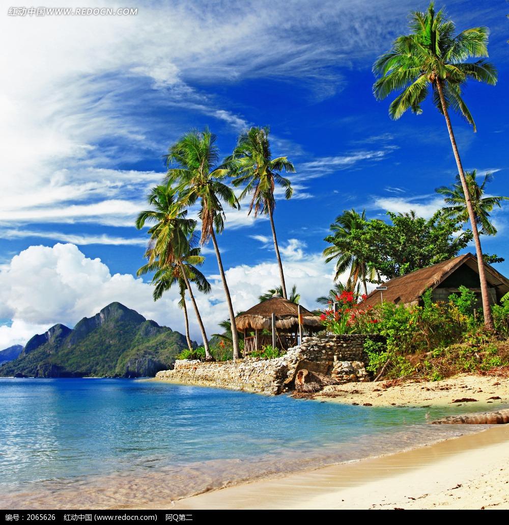 海岛上的椰树木屋图片
