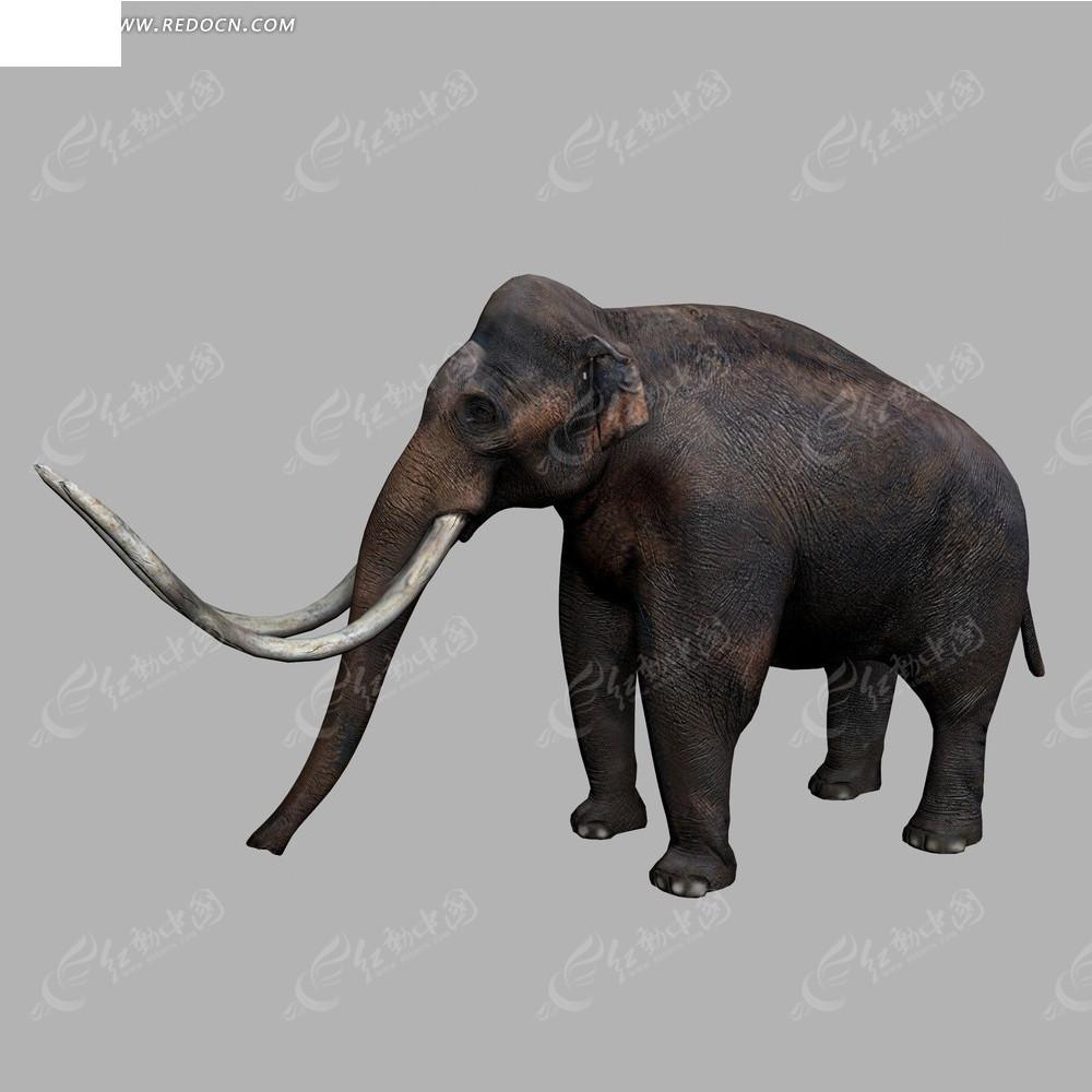 免费素材 3d素材 3d模型 动物植物 猛犸象  请您分享: 红动网提供动物