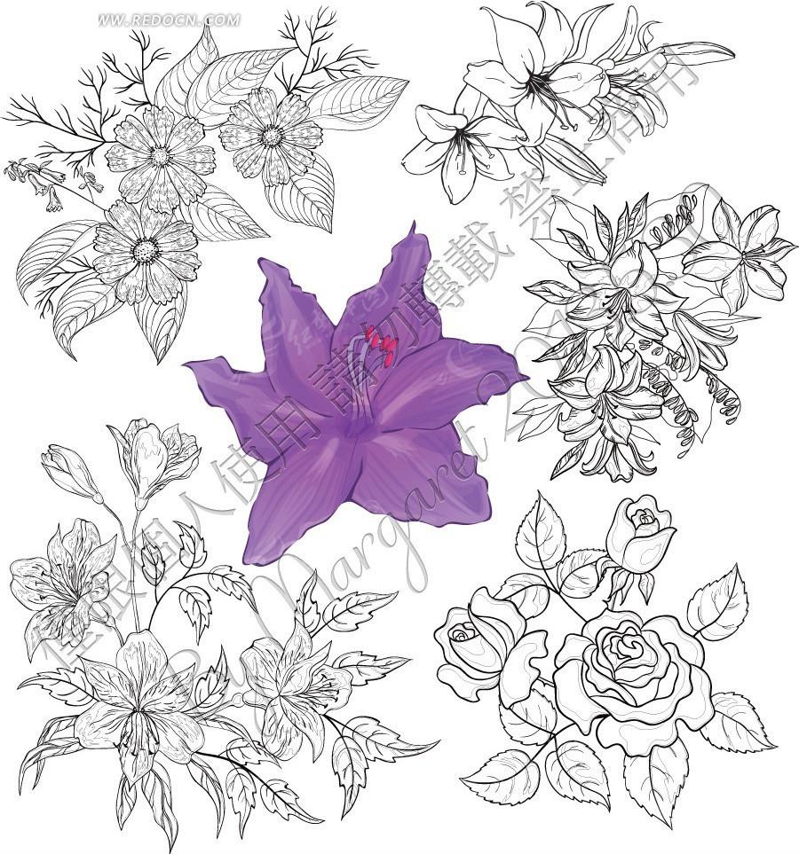 素描花朵EPS免费下载 花草树木素材 编号2096374图片