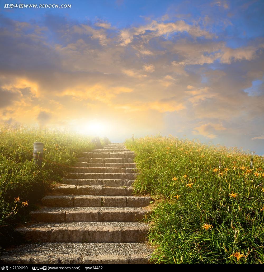 花草 高山 阶梯 台阶 登山 草地 云雾 太阳 阳光 风景 美景 美丽 自然