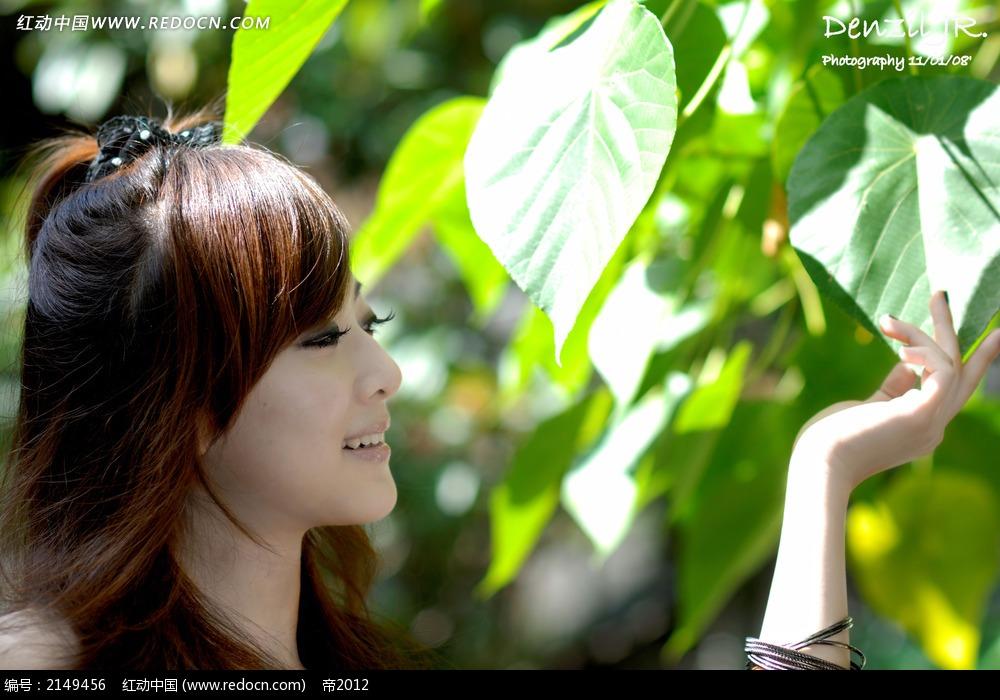 树叶和美女写真摄影图片