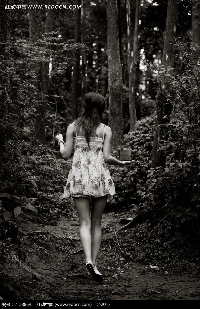 长发美女背影写真摄影图片 竖