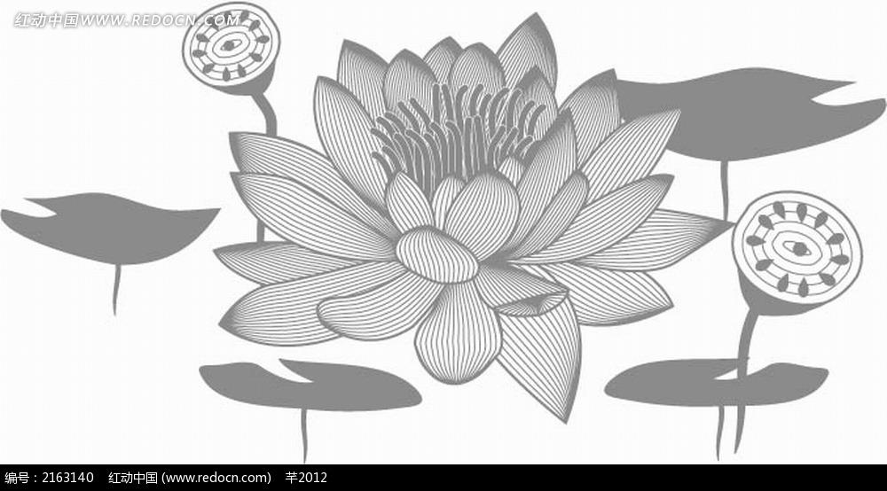 荷花和莲蓬黑白线描画