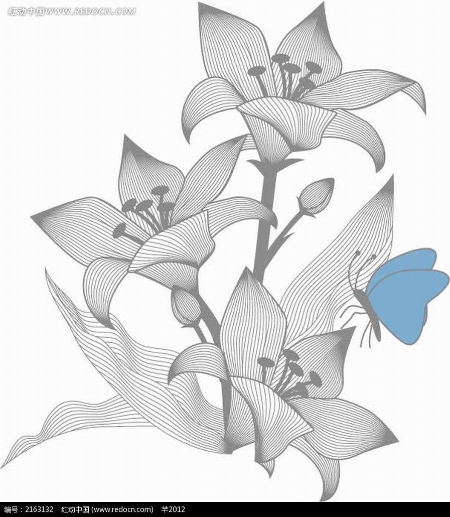 合花和蓝色蝴蝶黑白线描画EPS素材免费下载 编号2163132 红动网