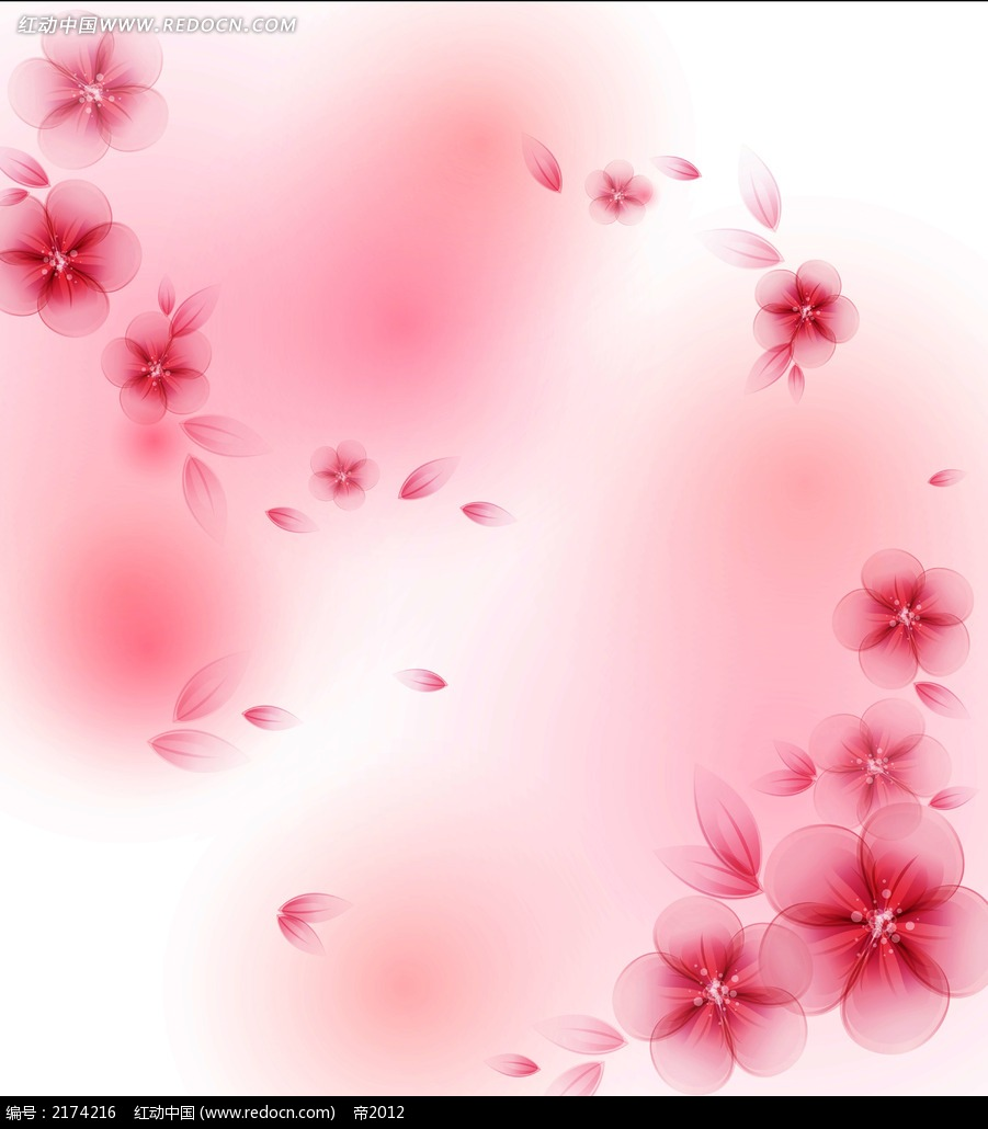 文字边框 手绘花瓣