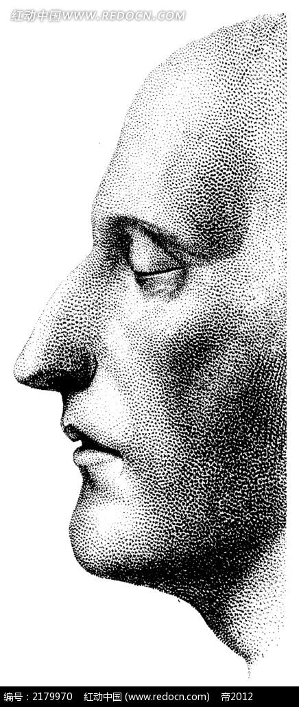 人体脸部左侧手绘插画jpg图片