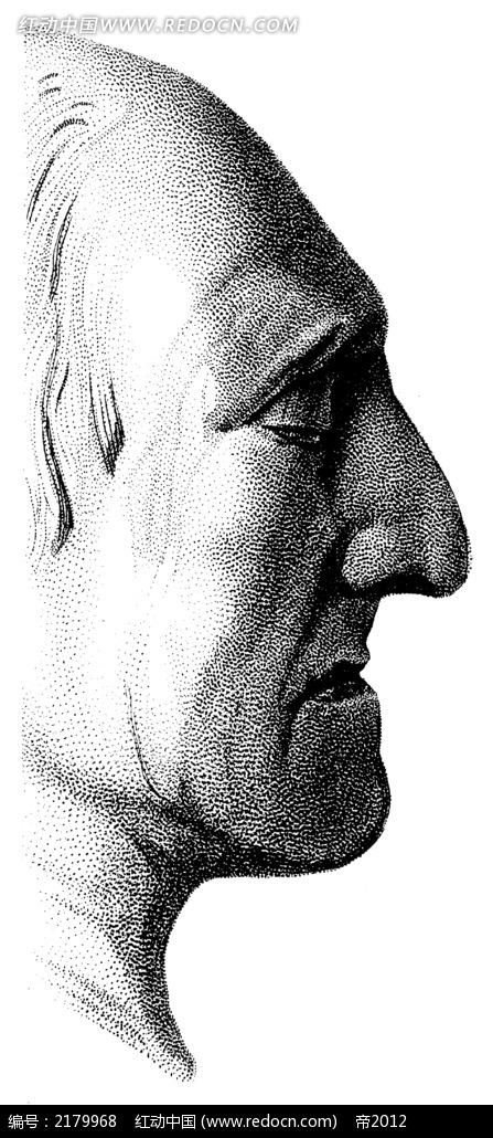 人体脸部右侧手绘插画jpg
