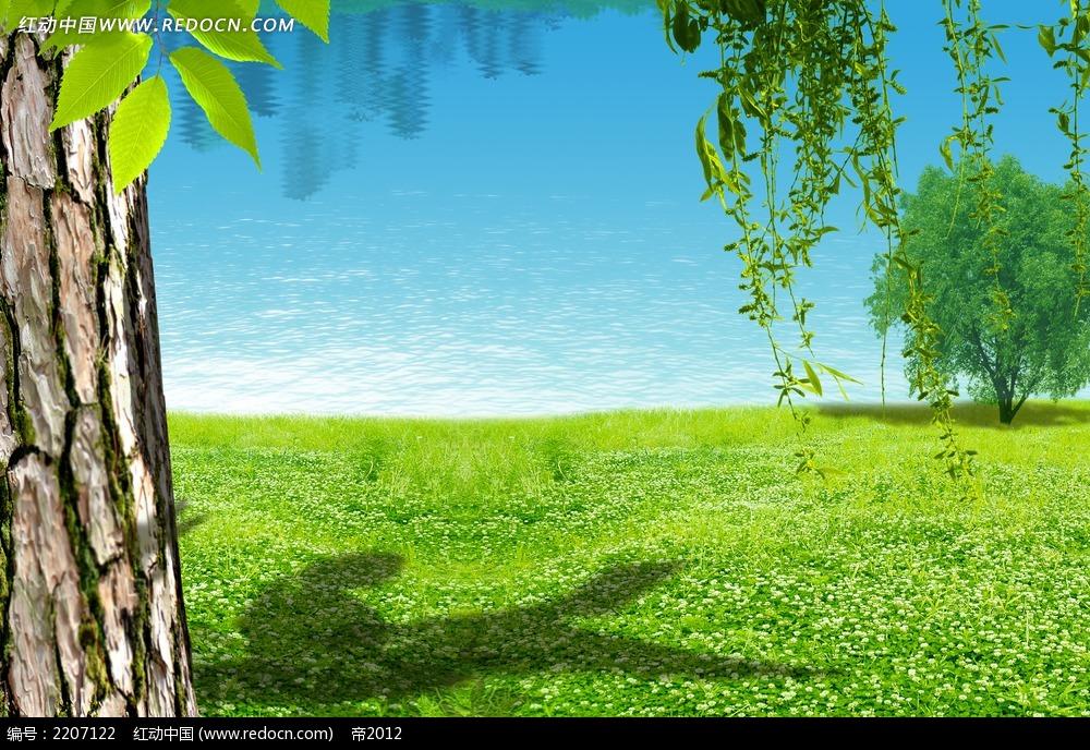 蓝天下大树倒影风景素材图片