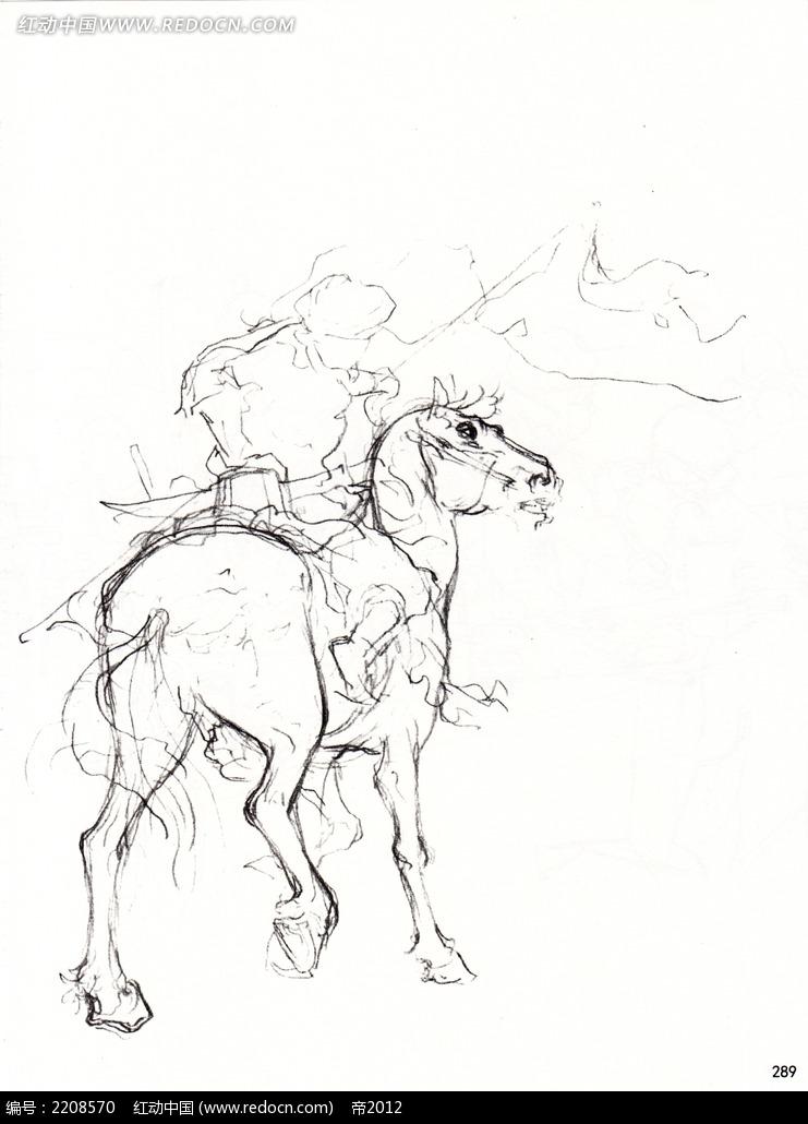 战马手绘线描图片_人物卡通图片