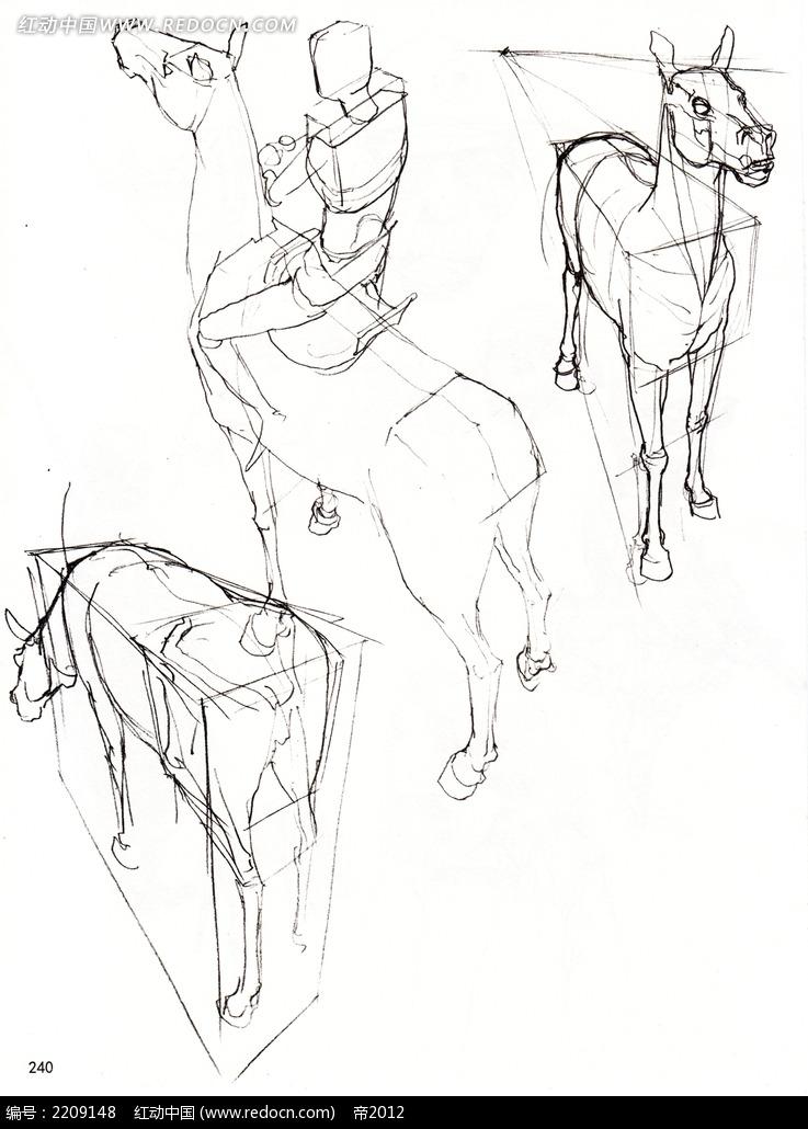 马骑马的人插画手稿图片