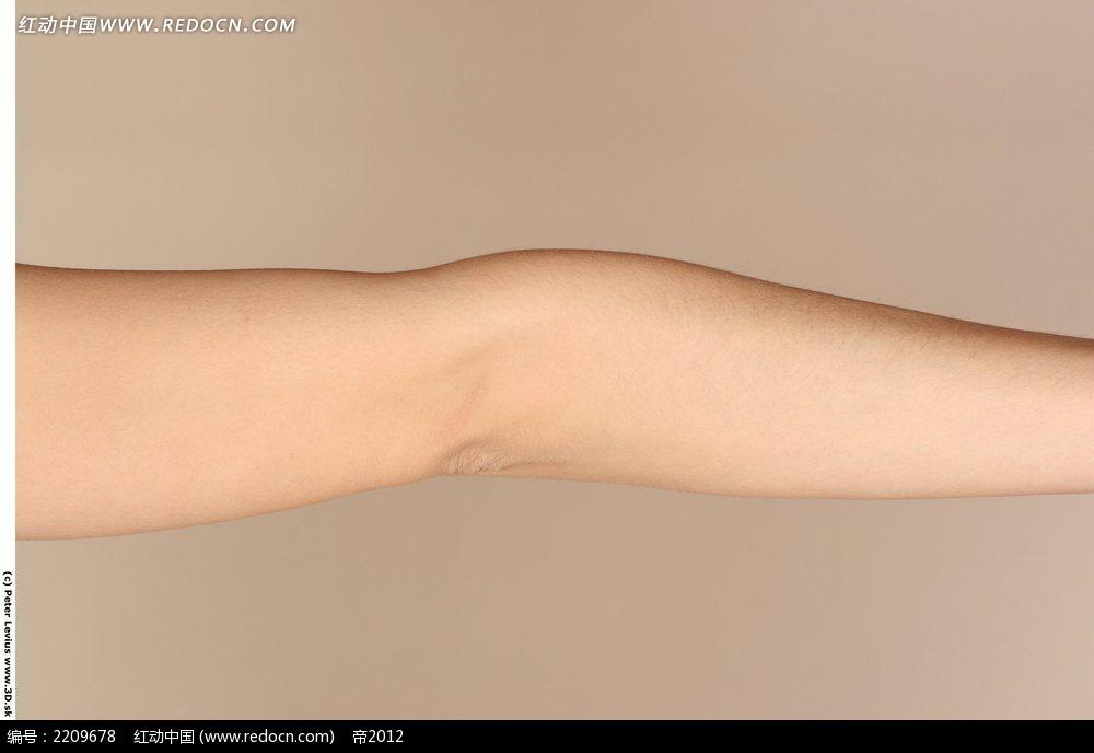 手臂手肘特写摄影图片jpg