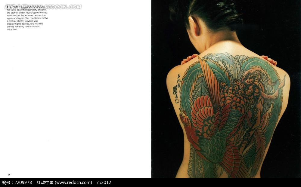 女人后背纹身图案设计图片