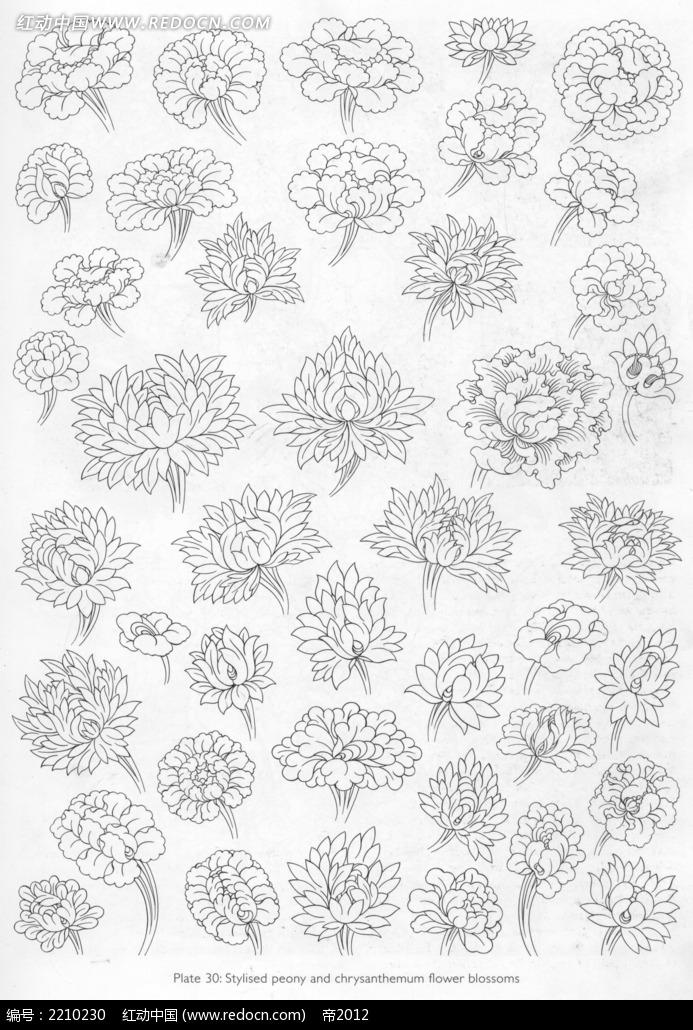 花朵手绘图形图案