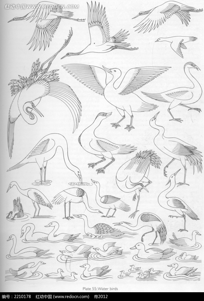 仙鹤手绘线描图形