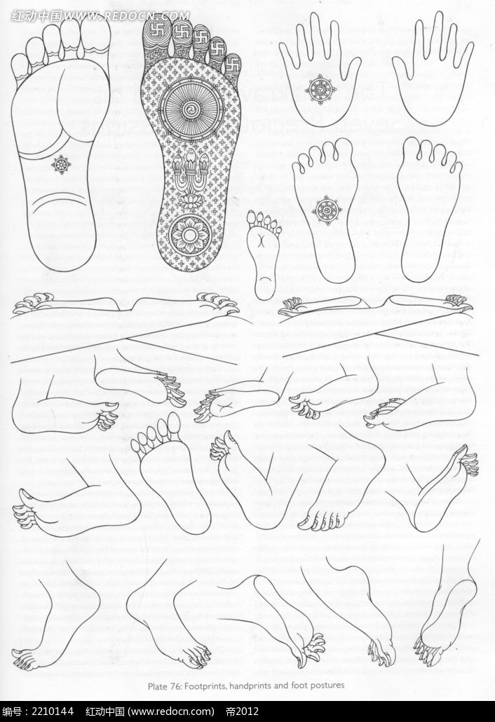 脚型手绘线描稿